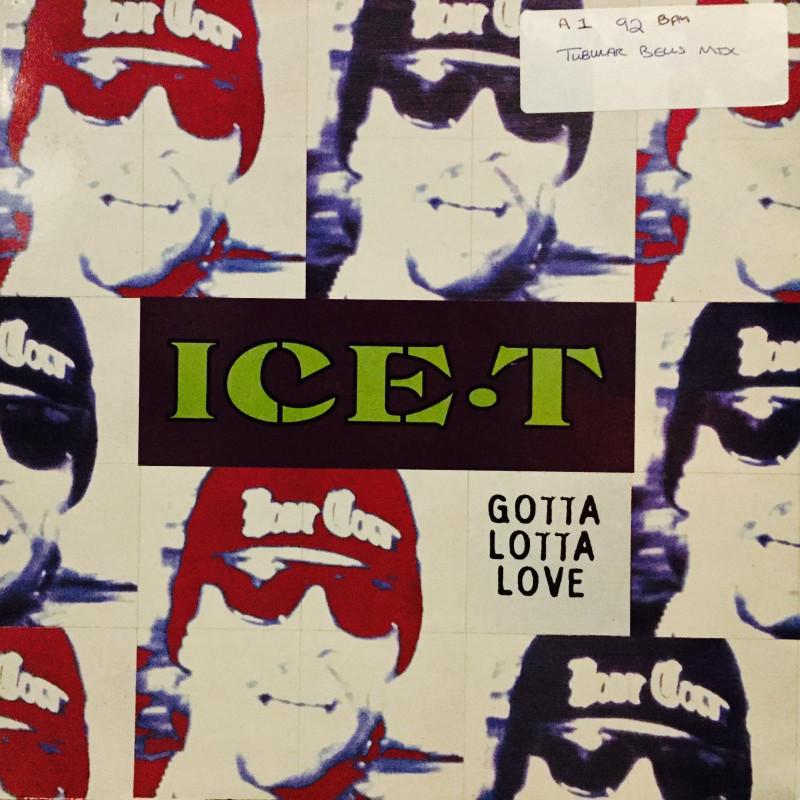 Ice-T - Gotta Lotta Love